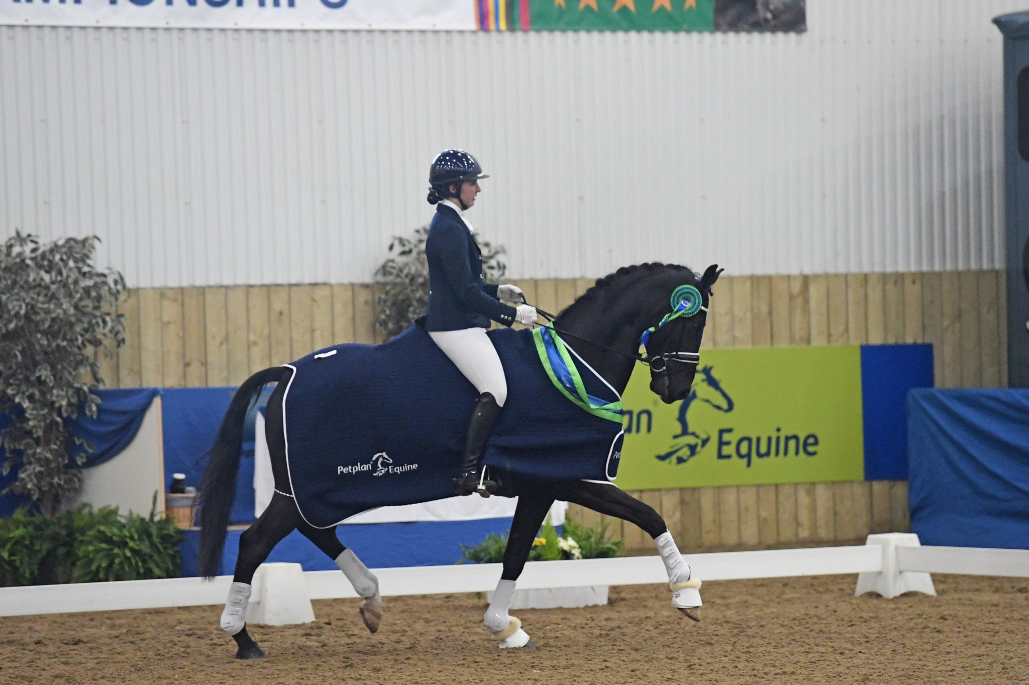 Novice Open and High Achiever Charlotte Barber - Lincolnshire Dressage Rider is Awarded PetPlan Equine High Achiever Award 2016