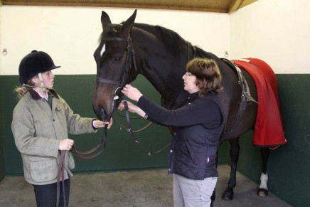 Correctly Fitting a Bridle 436x291 - Fitting a Bridle
