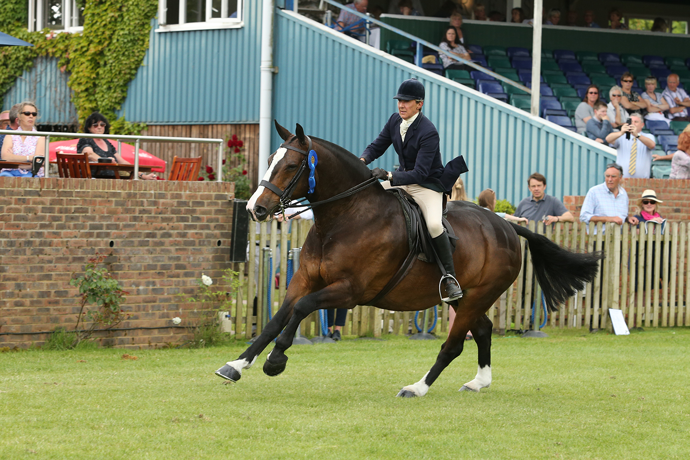 Jayne Ross photo by Julian Portch - Perfecting Your Show Ring Gallop with Jayne Ross