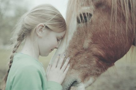 girl and horse 1 436x291 - Trigga Helps to Stamp Out Bullying