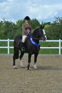 1st Cob CarlyMcGuinness and Cobra Credit SMR Photos 200x300 - Local riders qualify for Horse of the Year Show