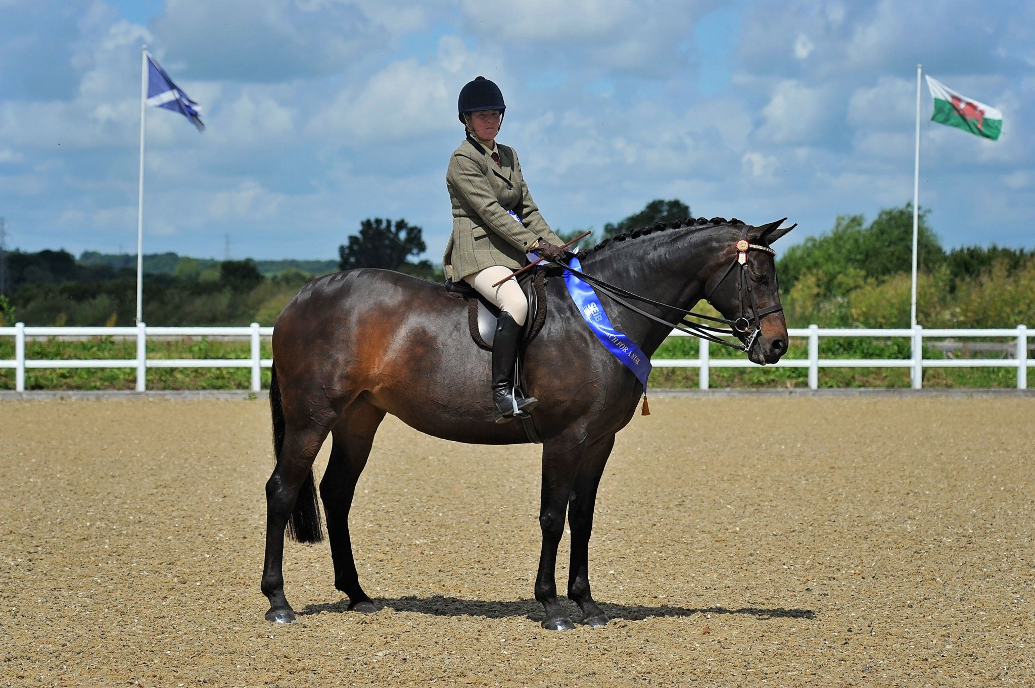2nd Riding Horse Hack Samantha Henshaw Trevisquite Credit SMR Photos 1 - Local riders qualify for Horse of the Year Show