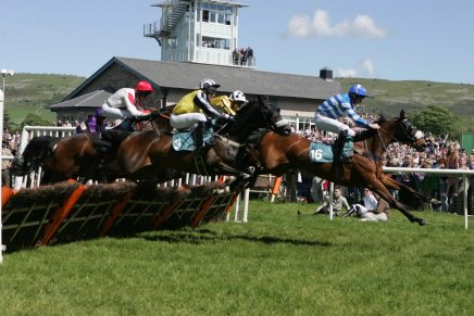 Visit the BTRC at the Cartmel Racecourse Cumbria Crystal Cup Day