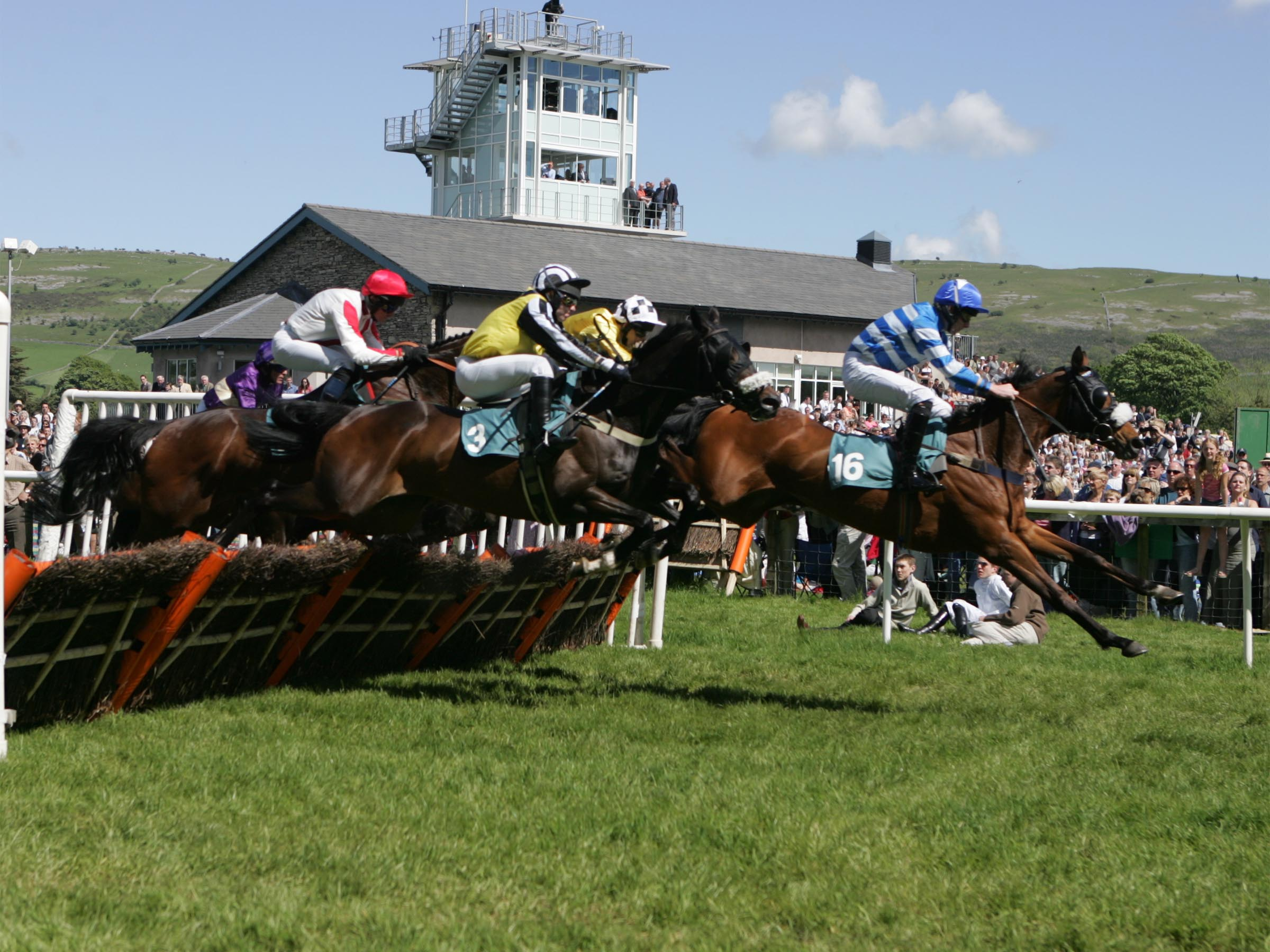 ASV 050 - Visit the BTRC at the Cartmel Racecourse Cumbria Crystal Cup Day