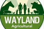 The Wayland Show – August 7th 2016