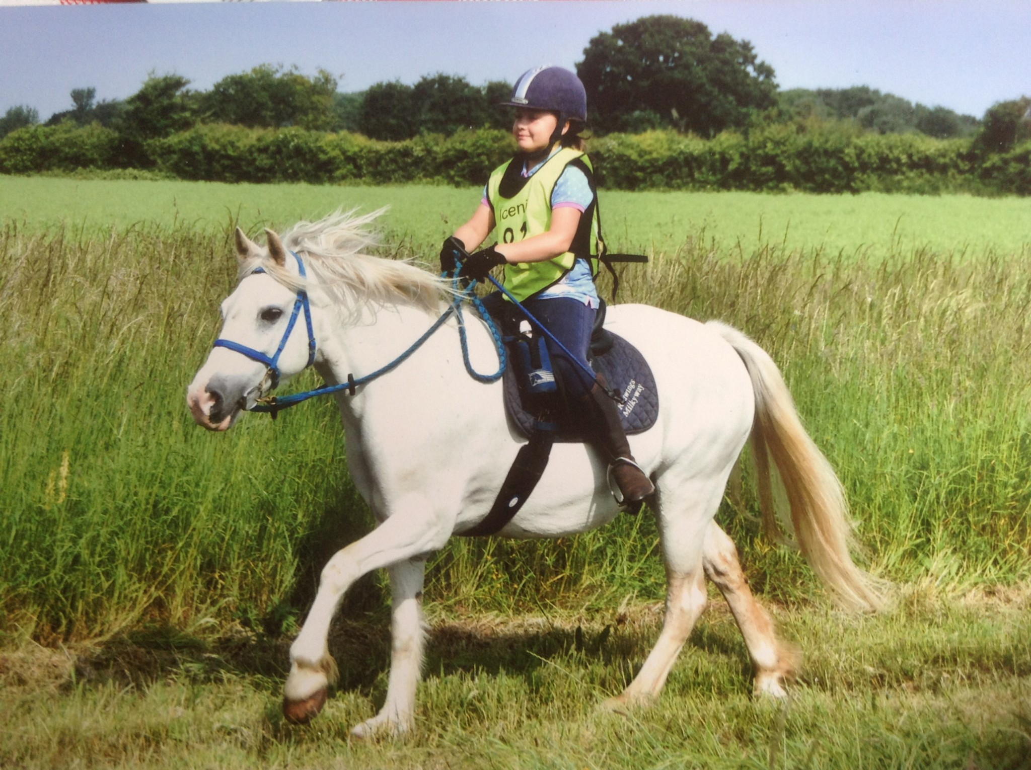 ELLA POMROY REDWINDS MILKYWAY - ENDURANCE Riding  – something for all the family!