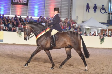 Day Three Round Up at Equifest