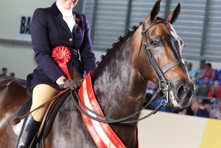 Liz Cowley and Miracle Mickey 436x291 - Day 1 at Equifest 2016