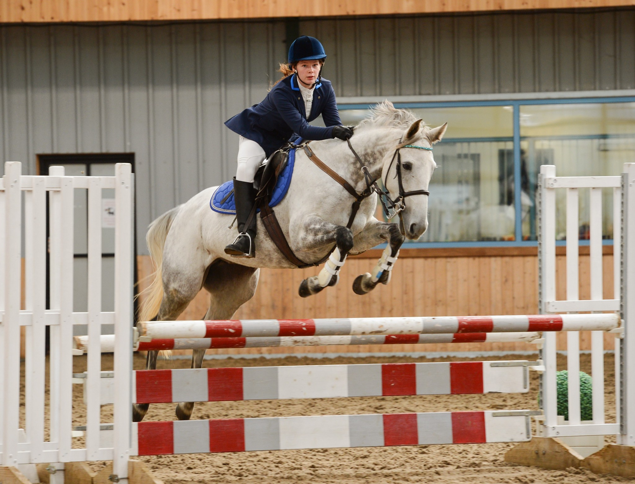 Amelia Cox Diamond Jessica Houghton Hall EC Credit Andy Fountain Photography - Lincolnshire's Amelia Cox is Unbeatable in Dodson & Horrell 0.95m National Amateur Second Round at Houghton Hall Equestrian Centre