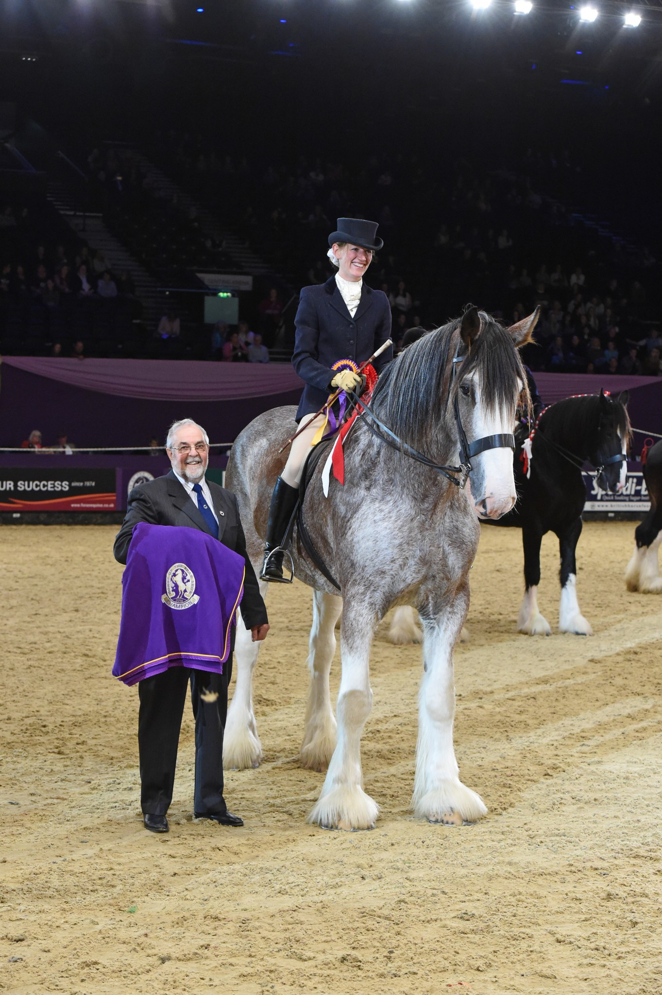 British Ridden Heavy Horse Championship 2 - Clydesdale Kinclune Danny Boy leads the Heavy Horses in hugely successful first ridden class at HOYS