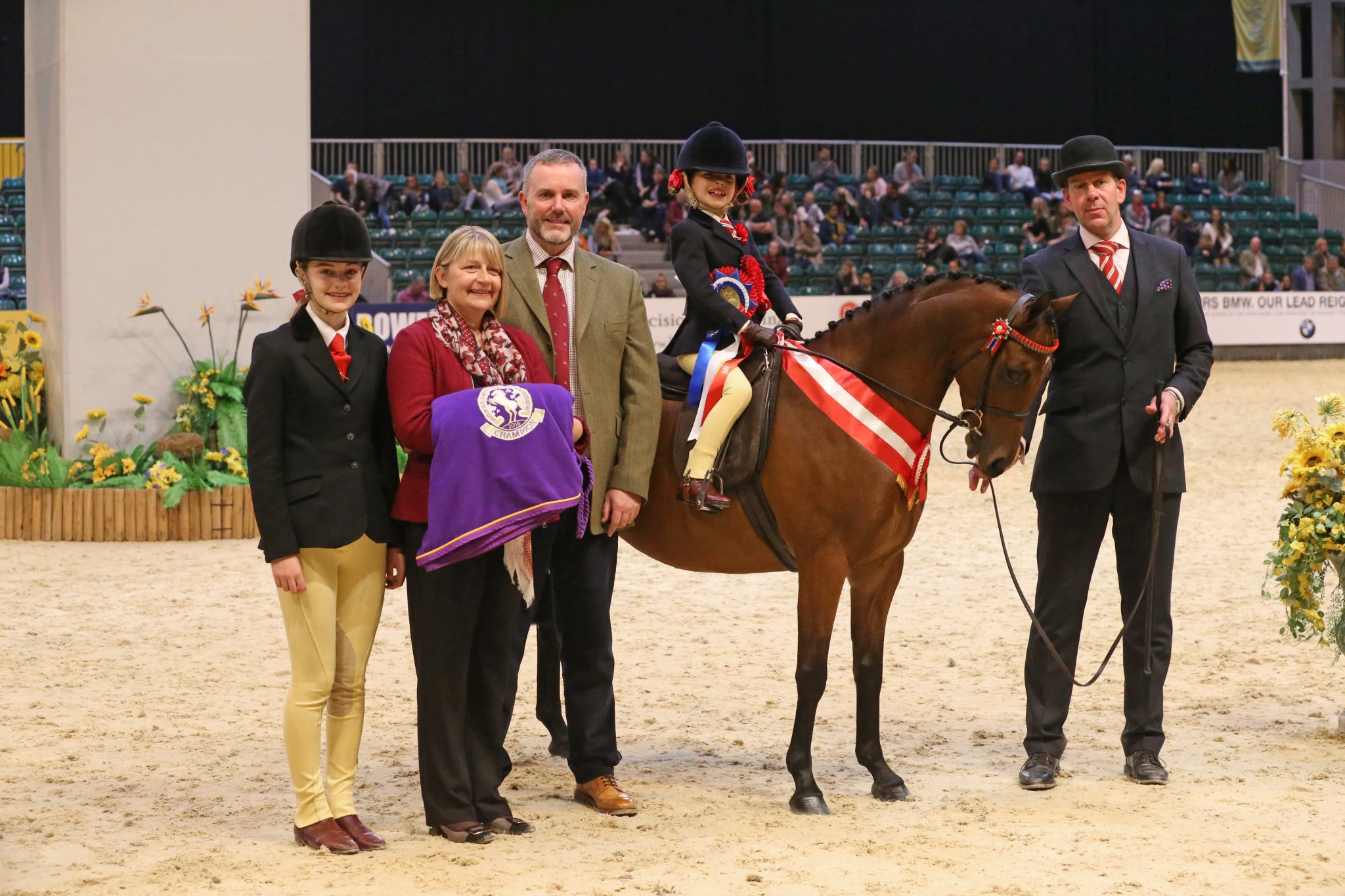 The Price Family Mini Show Pony of the Year 1 - Wytchwood Love Potion is victorious in The Price Family Mini Show Pony of the Year