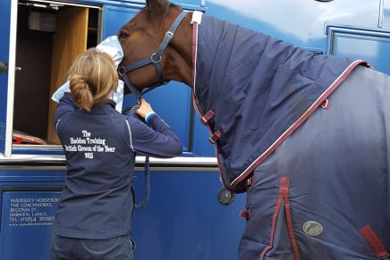 Adele Clark 1 436x291 - British Grooms Awards Nominations Close 18th November - have you entered yours?