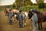 MBP 0604 ZF 3222 28731 1 010 150x100 - Glittering gold and silver medals brought delight to the faces of the children at Caistor Equestrian Centre.