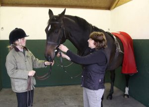 Checking the bridle 300x216 - The Importance of Fitting a Bridle Correctly