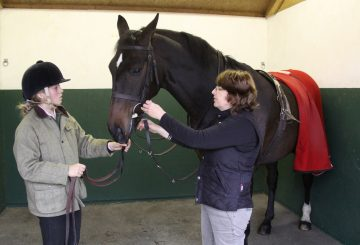 Checking the bridle 360x245 - The Importance of Fitting a Bridle Correctly