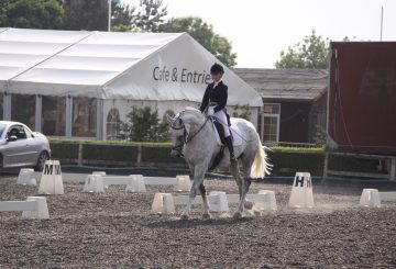 Dressage Image 360x245 - Trickle Net Launch Search for Next Dressage Superstar!