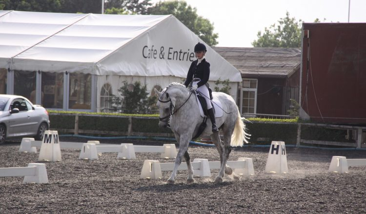Dressage Image 750x440 - Trickle Net Launch Search for Next Dressage Superstar!