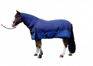 Fixed Neck Turnout Rug 07 300x214 - Outdoor lovers can get kitted out with Aldi - Fab Equestrian Gear