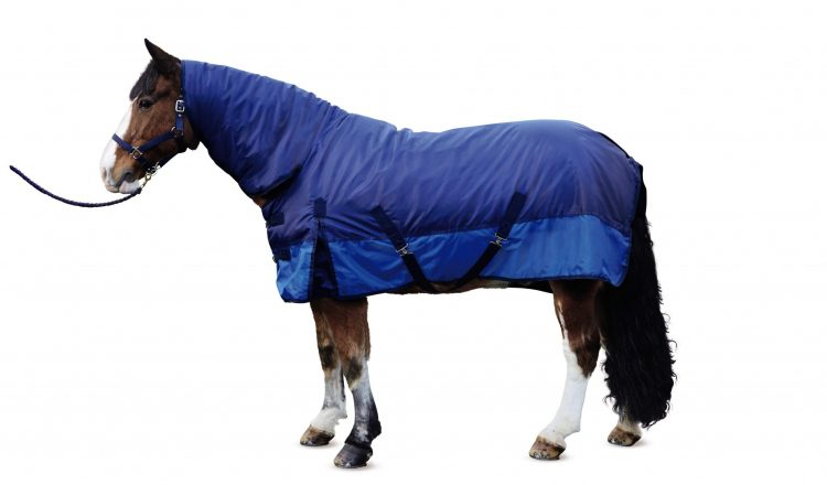 Fixed Neck Turnout Rug 07 750x440 - Outdoor lovers can get kitted out with Aldi - Fab Equestrian Gear