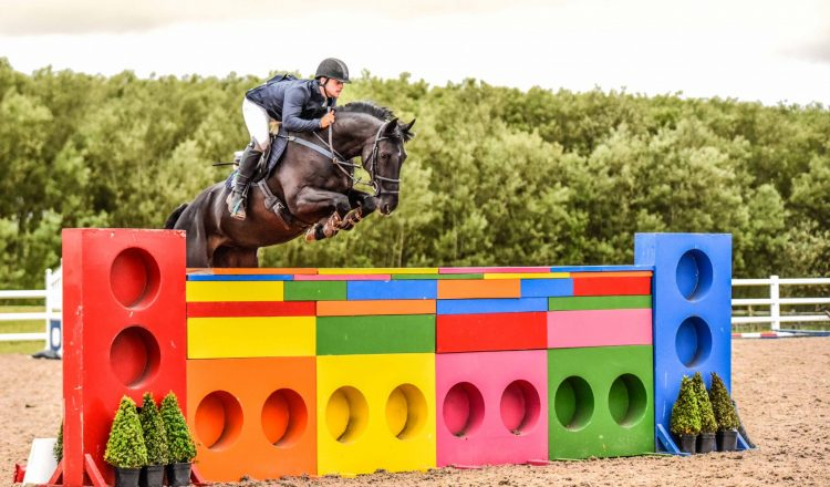 MBP8169 2 750x440 - Willow Banks Puissance 2017
