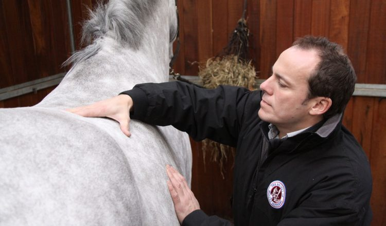A thorough consultation is key 750x440 - Q&A with SMS Master Saddler Laurence Pearman