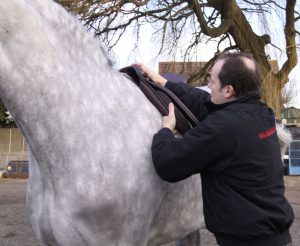 The right saddle for the job 300x246 - Q&A with SMS Master Saddler Laurence Pearman