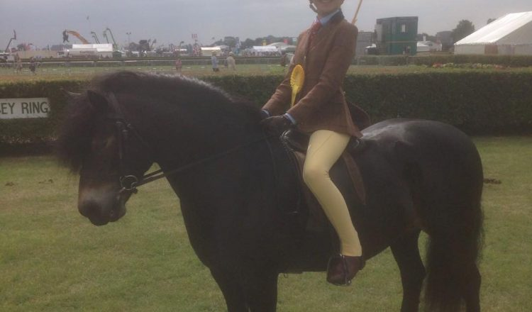 19457726 746954922158480 1261965854 o 750x440 - A Great Lincolnshire County Show For Local Riders