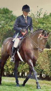 Katie Jerram and Royden Sweet William 169x300 - A Great Lincolnshire County Show For Local Riders