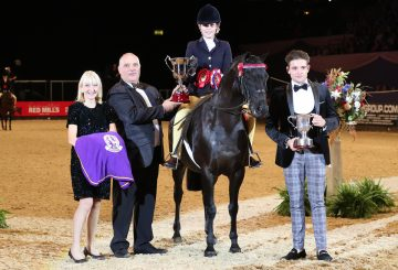 HOYS Kathleen Wood Childrens Riding Pony of the Year 360x245 - Home produced pony is Kathleen Wood Children's Riding Pony of the Year