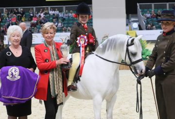 HOYS S1H 3990 C026 MM Mini Pony of the Year Championship 360x245 - Brineton Colne Mountain & Moorland Mini Pony of the Year Championship