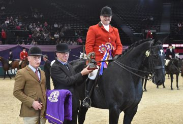 HOYS Small Show Hunter of the Year Championship 360x245 - Ebony King rules the ring in Small Show Hunter of the Year Championship