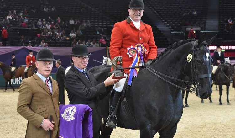HOYS Small Show Hunter of the Year Championship 750x440 - Ebony King rules the ring in Small Show Hunter of the Year Championship