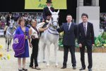 HOYS C028 Ridden Purebred Arab Championship 150x100 - Simon Constable Equine Vets and Mr & Mrs Roberts Ridden Purebred Arab of the Year