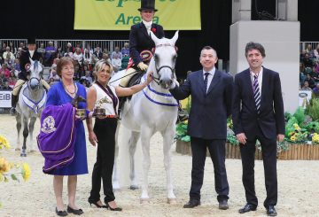 HOYS C028 Ridden Purebred Arab Championship 360x245 - Simon Constable Equine Vets and Mr & Mrs Roberts Ridden Purebred Arab of the Year