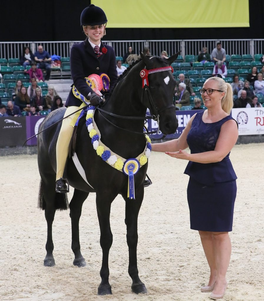 hoys 2017 S1H 4289 C027 Ridden Partbred Championship 897x1024 - Equissage Pulse Ridden Partbred Pony of the Year Championship