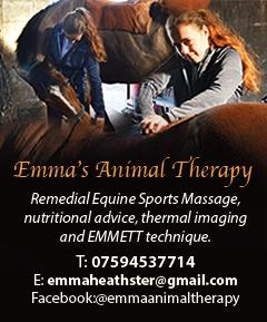 Emma's Animal Therapy