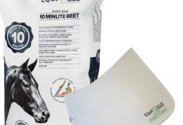 EquiGlo Ambassadors Pic 360x245 - Become a brand ambassador  for EQUIGLO Horse Feeds