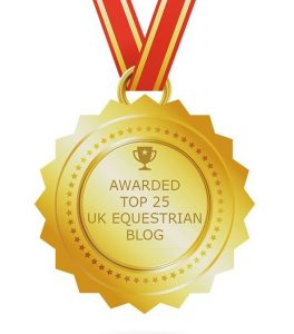 blogging award  264x300 - Request a Media Pack