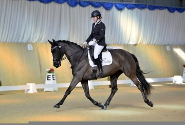 MJM5795 copy 360x245 - Sheer Determination! Meet Country & Stable Sponsored Rider, Amanda Shirtcliffe