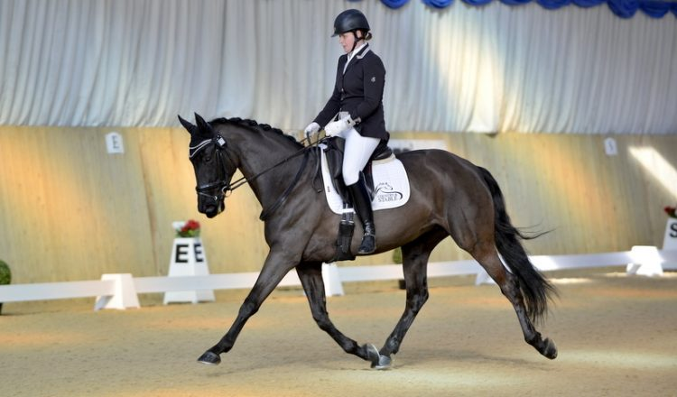 MJM5795 copy 750x440 - Sheer Determination! Meet Country & Stable Sponsored Rider, Amanda Shirtcliffe