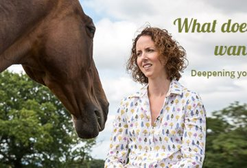 2018 Deepening your Connection Website Banner 1 360x245 - Horse communicator reveals what happens when she connects with animals