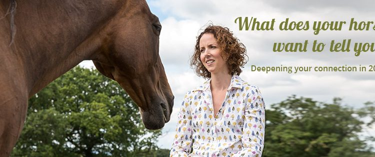 2018 Deepening your Connection Website Banner 1 750x315 - Horse communicator reveals what happens when she connects with animals