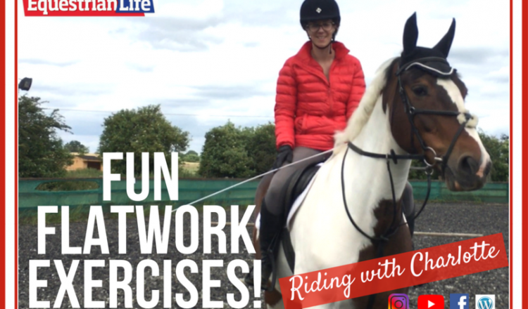 imageedit 2 5905845277 750x440 - Riding with Charlotte - Fun Flatwork Exercises!