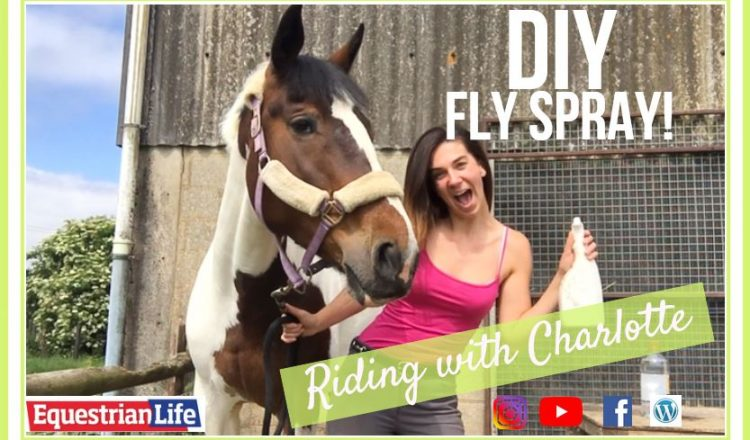 pastedImage 1 750x440 - DIY FLY SPRAY | Riding with Charlotte