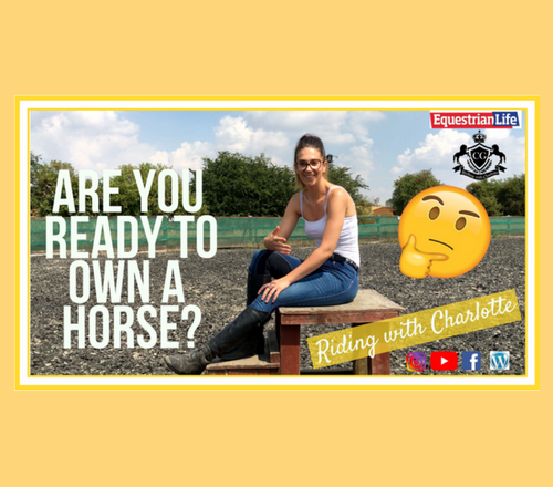 fb post 500x440 - Are you ready to own a horse? This week's vlog from Riding with Charlotte