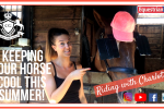pastedImage 150x100 - Riding with Charlotte - Keeping your horse cool this summer!