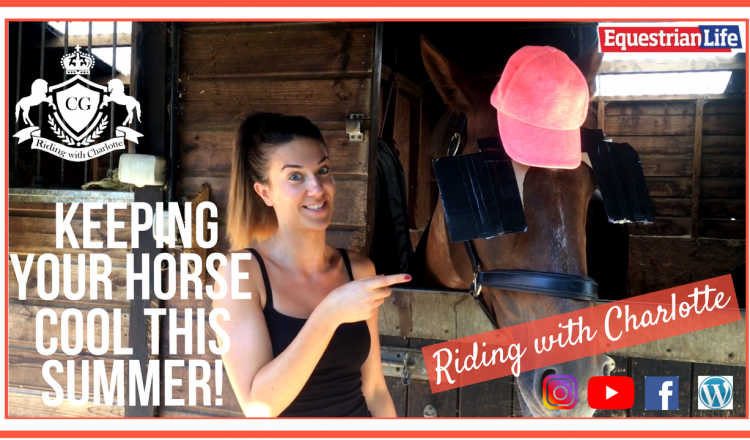 pastedImage 750x440 - Riding with Charlotte - Keeping your horse cool this summer!