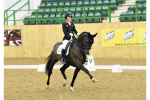 sophie wells 2 1 150x100 - Olympic medallists Dujardin, Hester and Wilton clean up in the Hazlewoods FEI CDI Grand Prix at Hartpury Festival of Dressage