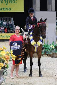 Class 27 Equissage Pulse Ridden Partbred Pony of the Year Championship Lucy Glover 200x300 - Five-year-old performs beyond his years to take Equissage Pulse Ridden Partbred Pony of the Year honours