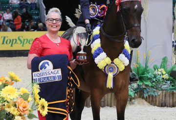 Class 27 Equissage Pulse Ridden Partbred Pony of the Year Championship Lucy Glover 360x245 - Five-year-old performs beyond his years to take Equissage Pulse Ridden Partbred Pony of the Year honours